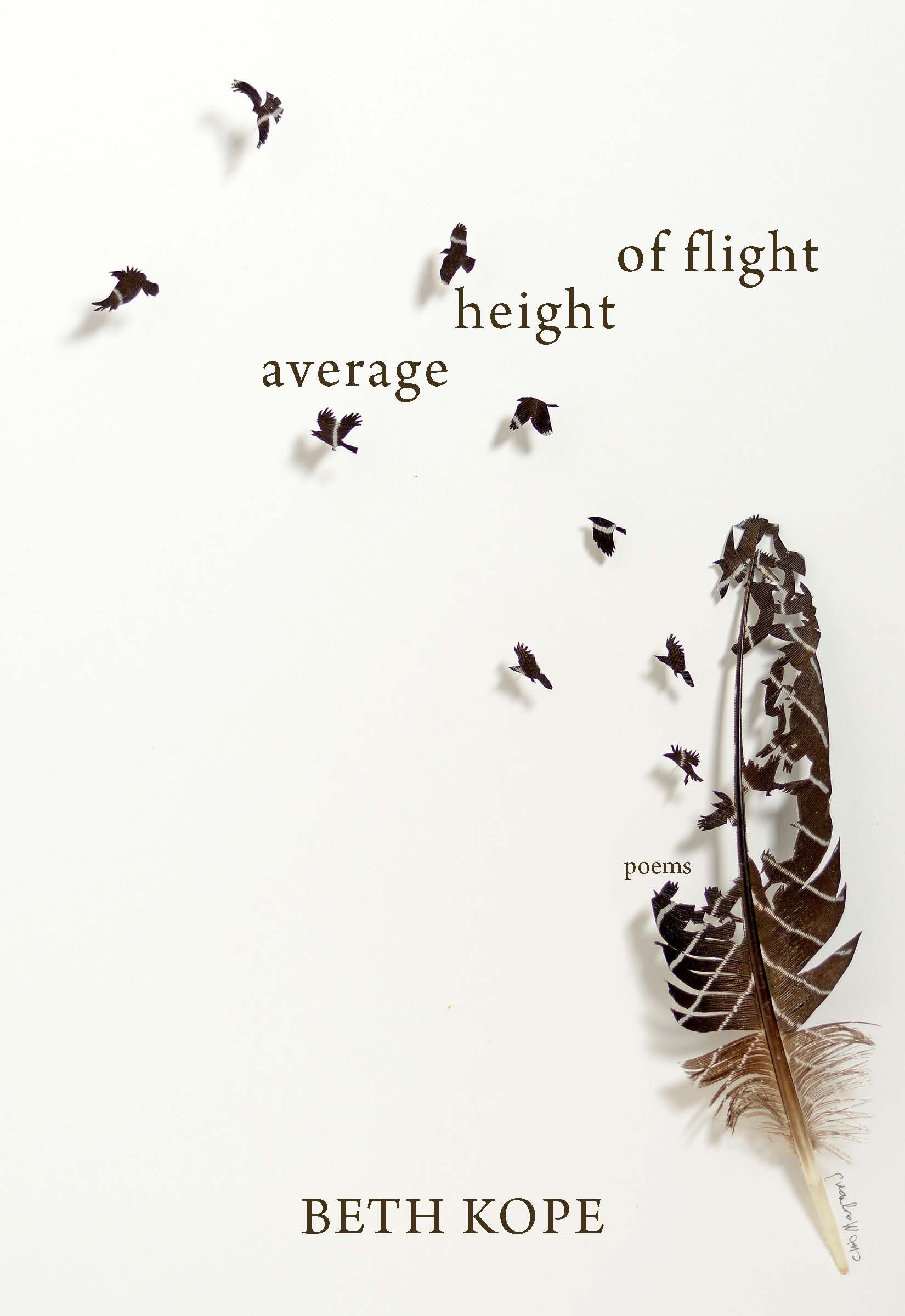 Average Height of Flight
